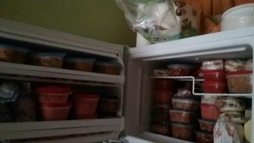 soup in freezer